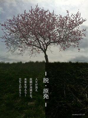 脱原発桜風景.jpg